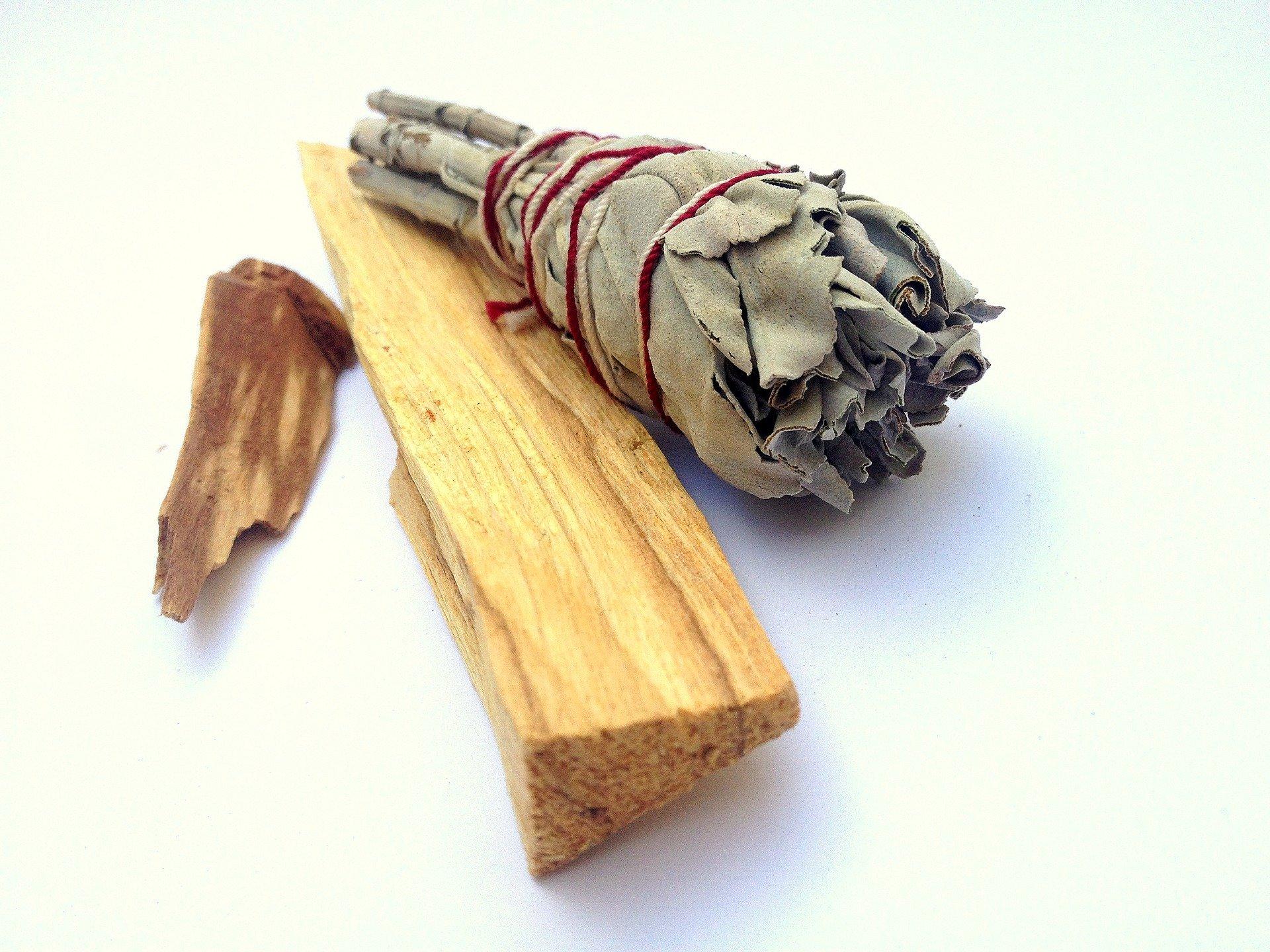 palo santo wood shavings and dried leaves